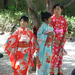 Miami Japanese festivities and events